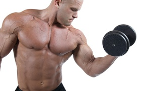 Picture pose, muscle, muscle, training, athlete, biceps, bodybuilder, training, dumbbell, weight, dumbbells, biceps, bodybuilder