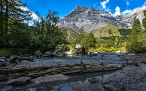 Picture forest, mountains, lake, Switzerland, Switzerland, Bernese Alps, The Bernese Alps, Valais, Lake Derborence, Derborence, Valais, …