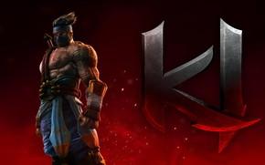 Picture game, martial artist, strong, Killer Instinct, 001