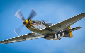 Picture the sky, screw, the plane, P-51D Mustang