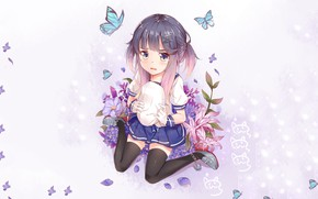 Picture look, butterfly, anime, girl