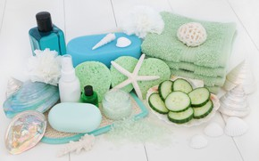Picture soap, shell, starfish, Spa, cucumbers, sea salt
