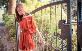 Picture gate, Asian, red dress