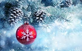 Wallpaper decoration, balls, Christmas, tree, balls, Christmas, bumps, decoration, Merry Christmas, snow, snow, New Year, Xmas