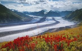 Picture Canada, Yukon Territory, Kaskawulsh Glacier