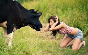Wallpaper girl, cow, meadow, tomfoolery
