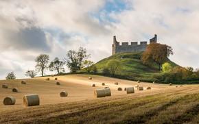 Wallpaper Hume Castle, field, Scottish Borders, hay