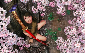Picture Girl, Sakura, Asian, Sword, Oriental, Kunoichi