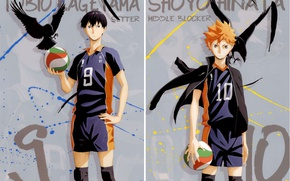 Picture the ball, feathers, red, crows, guys, sports uniforms, Haikyuu!!, Volleyball!, Shouyou Hinata, Tobio Kageyama, by …