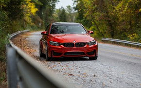 Wallpaper BMW, F80, Road, Forest, Autumn, RED