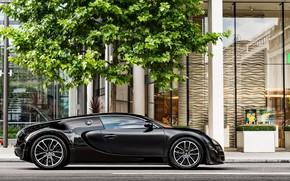 Picture black, Veyron, Bugatti Veyron, hypercar