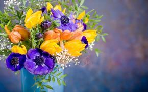 Picture flowers, bouquet, tulips, vase, anemones