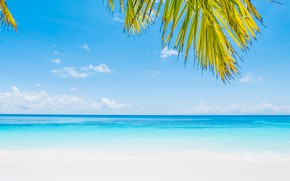 Picture sea, beach, summer, nature, Palma