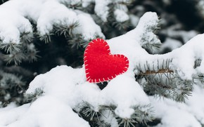 Picture winter, snow, love, heart, tree, red, love, heart, winter, snow, romantic, valentine, fir tree