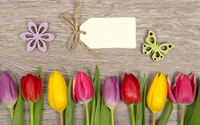 Picture flowers, colorful, tulips, love, flowers, romantic, tulips, spring