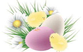 Picture chickens, chamomile, eggs, Easter