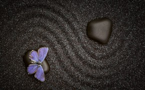 Picture sand, pattern, butterfly, stone, texture