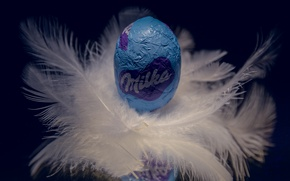 Picture egg, feathers, candy
