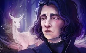 Picture art, Harry Potter, Severus Snape, by Ludmila-Cera-Foce