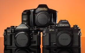 Picture macro, model, cameras