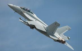 Wallpaper the sky, mediocrity, the plane, F/A-18F Super Hornet
