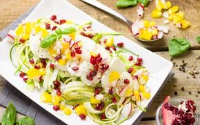 Picture food, vegetables, garnet, salad, zucchini, Mozzarella