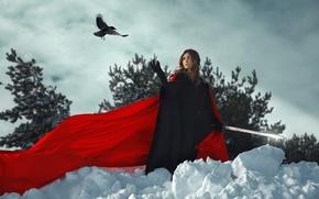 Picture girl, bird, sword