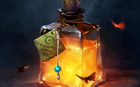 Picture fantasy, fire, bottle, fantasy art, digital art, liquid, Potion, butterflies, artwork