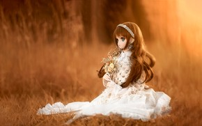 Picture flowers, background, mood, toy, doll, bokeh