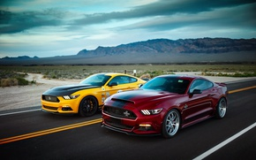 Wallpaper road, Ford, wild West, Mustang GT, Shelby Terlingua, Shelby Super Snake