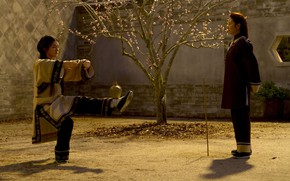 Picture China, cinema, movie, asian, film, martial artist, chinese, oriental, asiatic, Michelle Yeoh, Crouching Tiger Hidden …