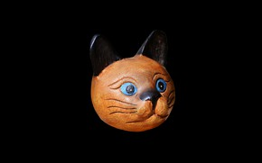 Picture black background, wooden, the face of a cat
