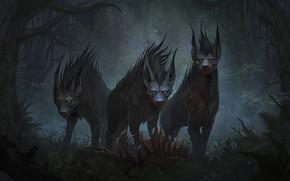 Picture forest, animals, look, predators, art, hyenas
