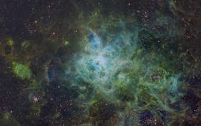 Wallpaper stars, nebula, nebula, tarantula