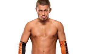 Picture look, pose, wrestler, WWE, Raw, Akira Tozawa, Akira Tozawa