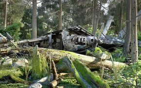 Picture forest, the wreckage, disaster, the jungle, CRASH SITE