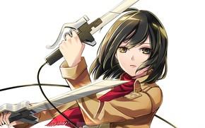 Picture look, white background, swords, art, military uniform, Shingeki no Kyojin, Mikasa Ackerman, red scarf, The …