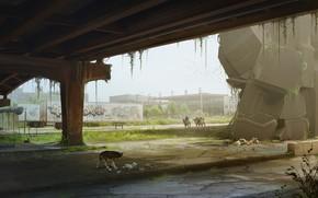 Picture dog, camels, desolation, Deserted, babylon-2