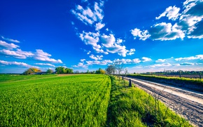 Wallpaper road, greens, the sky, the sun, clouds, field