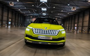Picture Concept, front view, 2018, Skoda, Vision X