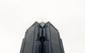 Picture fog, photo, background, skyscraper, background, skyscraper, fog, skyscraper, high-rise, a photo