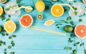 Picture lemon, orange, ice, lime, mint, lemonade
