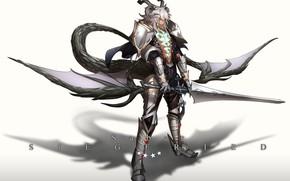 Picture anime, art, guy, fate/grand order, Berserker