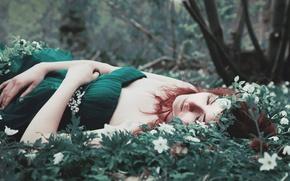 Picture grass, girl, flowers, dress, lies, red, green