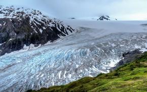 Picture Alaska, Nature, Harding Icefield, Kenai Fjord