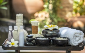 Picture flowers, stones, Spa, polotence, plumeria