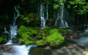 Picture greens, water, waterfall