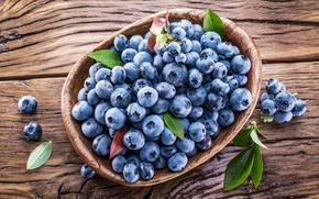 Picture berries, blueberries, basket, fresh, blueberry, blueberries, berries