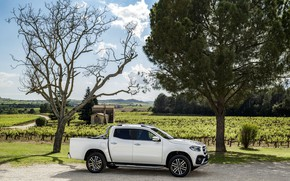 Picture field, white, trees, house, vegetation, Mercedes-Benz, Parking, pickup, 2017, X-Class