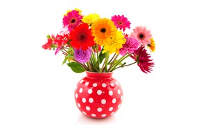 Wallpaper gerbera, white background, dahlias, red, colorful, vase, polka dot, flowers